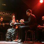Cardamomo: show de Flamenco em Madrid