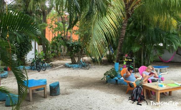 Mergulho em Cozumel, México: Beds Friends Hostel