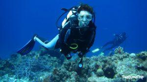 Mergulhar em Cozumel é recomendado para principiantes