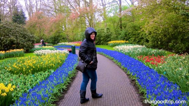 parque das tulipas na holanda: tão lindo