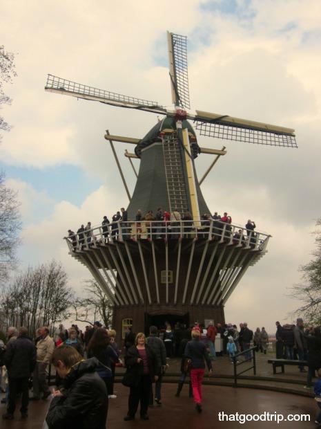 parque das tulipas na holanda: moinho de vento