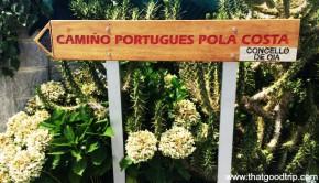 Caminho Portugues da Costa