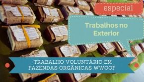 trabalho-voluntario-fazendas-organicas-9